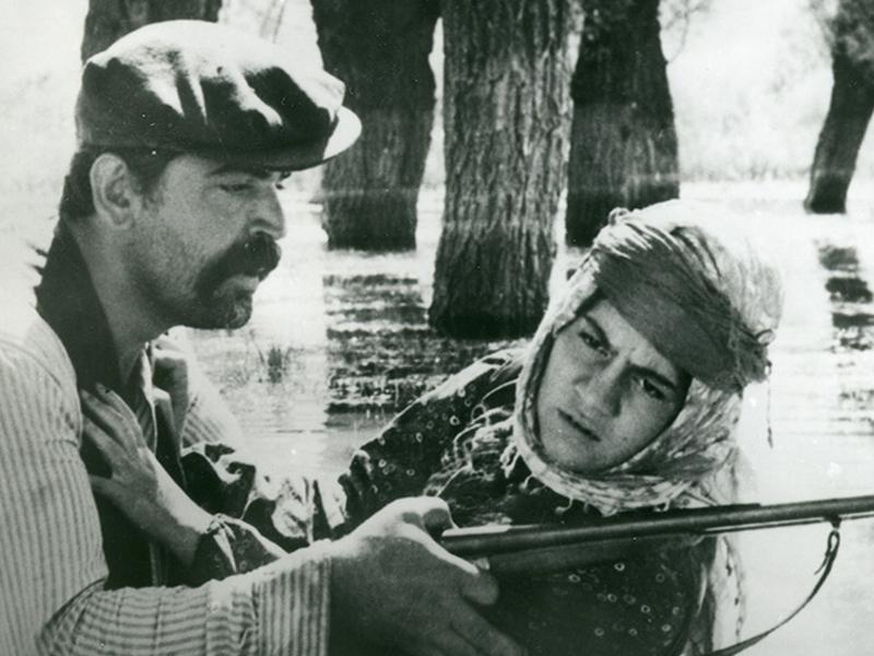 iyi21-37. İstanbul film festivali