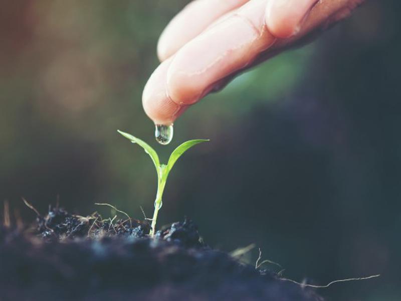 22 Mart Dünya Su Günü: Su İçin Doğa