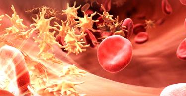 Hemofili Nedir?